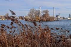 Rushes, Love Island, power station