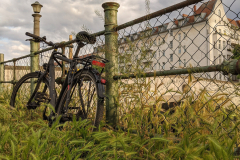 Bike and fence