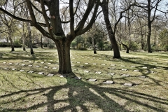 War graves and shadows