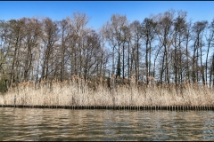 Banks of the River Dahme